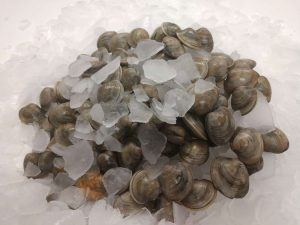 100 Clams - Buy on our online store - Ward Oyster